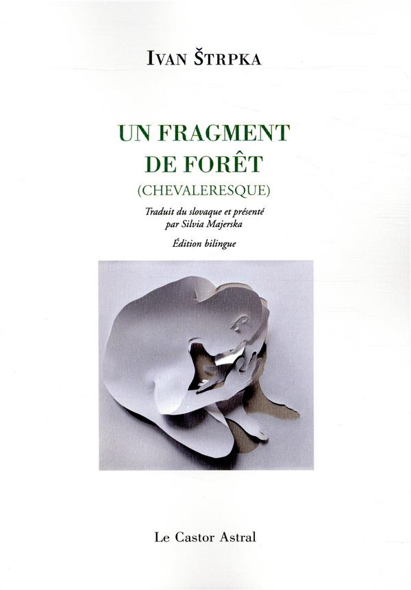 UN FRAGMENT DE FORET (CHEVALERESQUE)